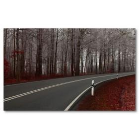 Αφίσα (δρόμος, φθινόπωρο, φύλλα, φύση, τοπίο)
